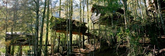 Huilo Huilo - Canopy Village