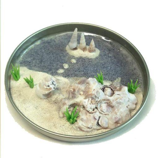 Tin cover art: Sand Dune